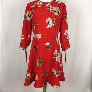 Topshop Paint Floral Frill Tea Dress (size: 6P)